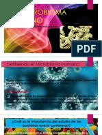 elmicrobiomahumanopresentacion-121130232734-phpapp01.pptx