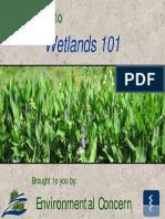 Wetlands 101 Pp t