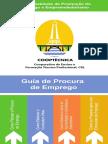 Guia de Procura de Emprego