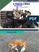 Sesión 8_Chacra y Mar_10062018