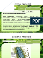 "Teori Fisiologi Mikroba ""Stuktur Sel Mikroorganisme"" by Bu Nani Radiastuti M.Si"