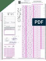 C1 2013. PI. PLANTILLA.pdf