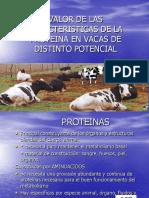 Proteinas Metabolismo y Uso Ok Ok