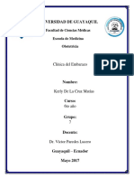 6, CLINICA DEL EMBARAZO.docx