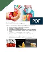 Beneficios de Los Alimentos Transgénicos