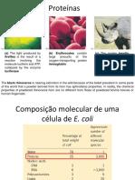 004_aminoacido