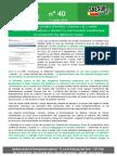 Cneser Projets Arretes Licence Lettre Flash 40 11 Juillet 2018