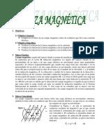 Informe Fuerza Magnetica