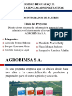 Diapositivas Del PIS Grupo 5