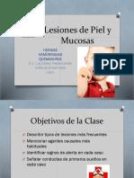 LesionesdePielyMucosas2017_2_