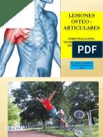 Les i Ones Osteo Articular Es