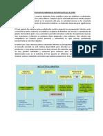 335207613-Exportacion-de-Minerales-No-Metalicos-en-El-Peru.docx