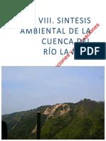 Rio_La Mie_VIII. Sintesis Ambiental La Miel