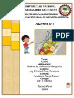 Practica N° 1 (ArcGIS).docx