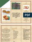TAREA PARA IMPRIMIR.pdf
