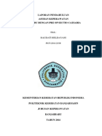 245482787-LP-PRE-SC.docx