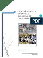 GUÍA PRÁCTICA N° 12_2018_I (1).docx
