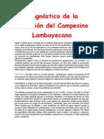 Diagnóstico de La Situación Del Campesino Lambayecano