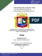 Nuñez_Godoy_Agustina.pdf