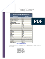 Ten-Six-Hot-Keys-P6-Professional(3).pdf