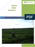 Business Plan Tomato Production Ndola Zimbabwe