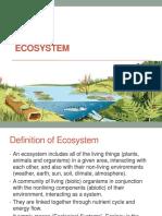Lesson 2- Ecosystem