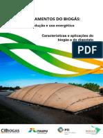 Aula 2 - Características e Aplicações Do Biogás e Do Digestato