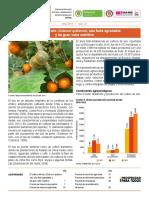 insumos_factores_de_produccion_may_2014.pdf
