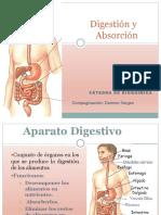 Digestión y Absorción 2017
