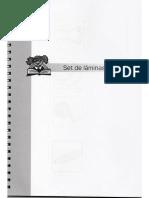 Set de Laminas PECFO.pdf