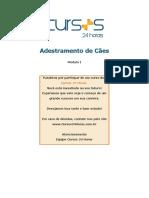adcaes1
