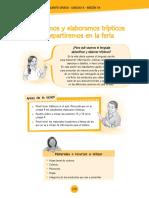 TRIPTICO t.pdf