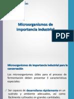 2 Microrganismos de Uso Industrial
