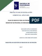 2017 Castillo Plan de Negocio Para Un Programa