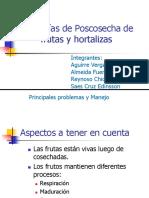 Patologías de Poscosecha de Frutas y Hortalizas