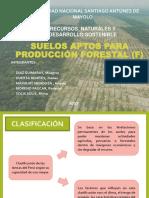 Suelos Aptas Para Producción Forestal