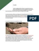 Estructura_del_suelo.pdf