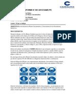 Informe Planta Concentradora de Paul 17-01-2015 - copia.docx
