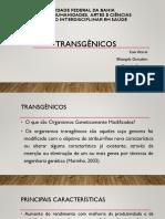 Transgênicos2