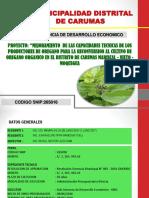 Situacional Proyecto Oregano