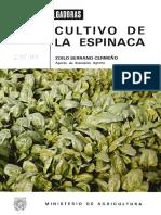 Espinacas.pdf