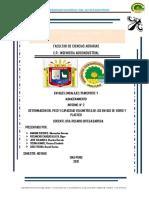 Informe-N° 2