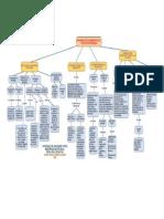 Paola_Cuaran_Mapa_Actividad1.1.pdf