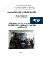 1516379613 Líneas Investigación 2017 UNASAM