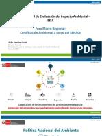 8. Sistema-Nacional-de-Evalucion-del-Impacto-Ambiental-SEIA_Minam.pdf
