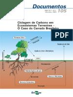 Ciclagem do carbono em ecossistemas terrestres.pdf