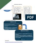 Fundamento Conceptual . FISICA APLICADA