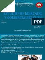 Estudio Del Mercado y Comercializacion