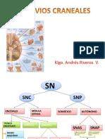 Sistema SNC