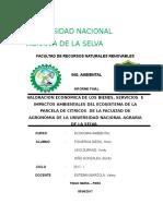 Informe-final de Eco Ambiental